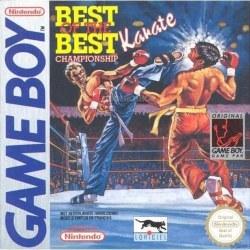 Best of the Best Karate Gameboy