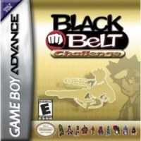 Black Belt Challenge Gameboy Advance