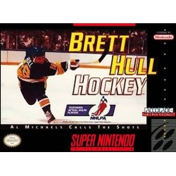 Brett Hulls Ice Hockey