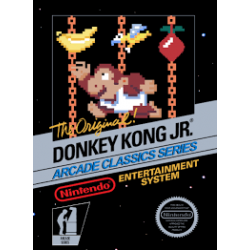 Donkey Kong Junior NES