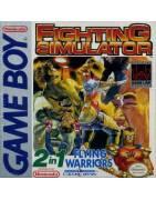 Fighting Simulator Gameboy